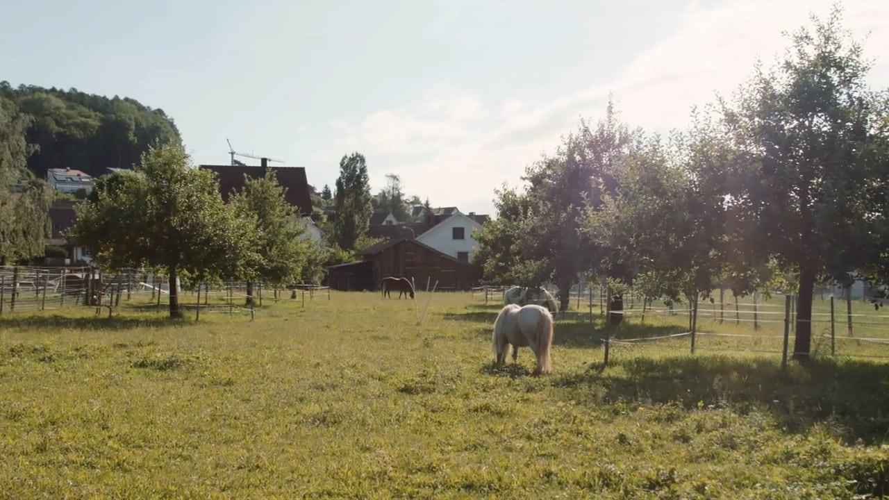 Lebenshof TierMensch